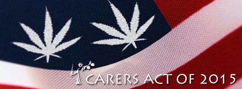 carersact1