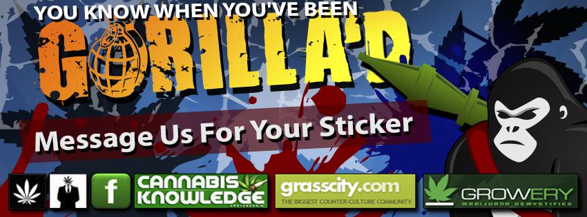 gorillad blog banner