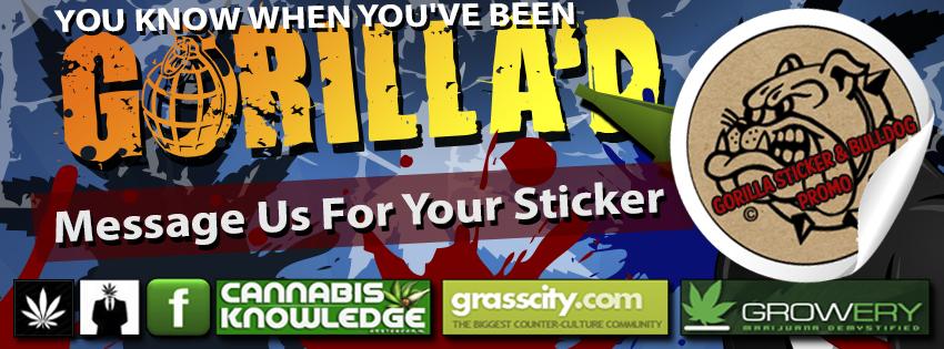 bulldog blog facebook2