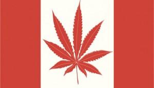 o-CANADIAN-FLAG-MARIJUANA-facebook-702x336